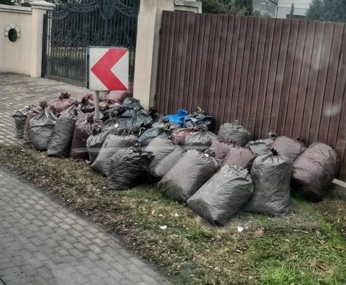 Na zdjęciu: worki z odpadami